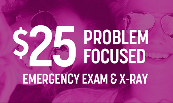 emergency dental exam special offer